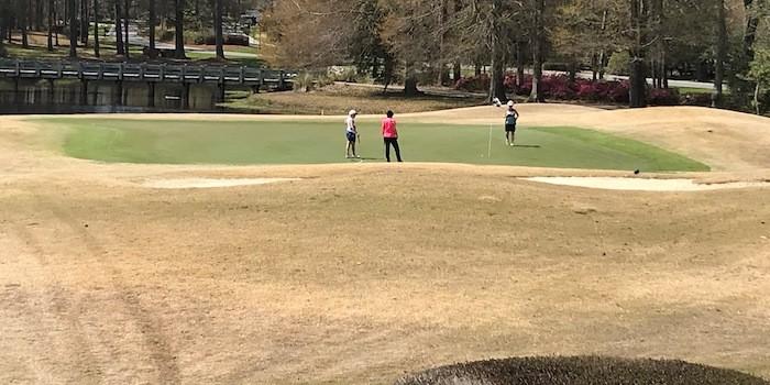 Big Cats Golf Courses NC