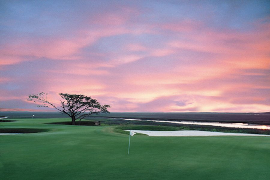 Myrtle Course Conditions after Matthew