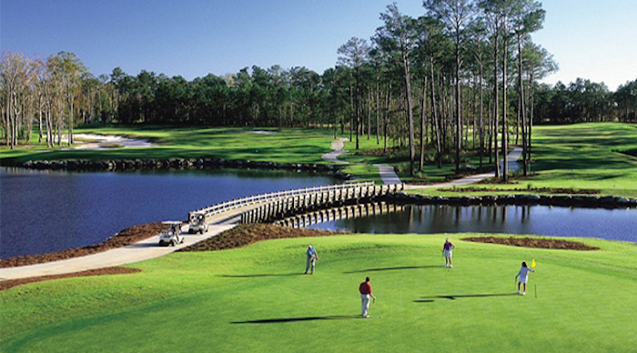 Tigers Eye Course Reviews Travel