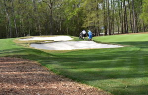 TPC Golf Course Myrtle Beach Reviews