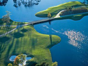 lions paw golf course reviews