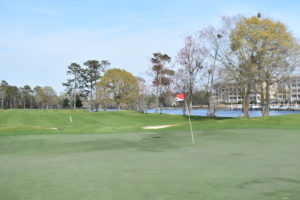 Arrowhead Golf Myrtle Beach Reviews