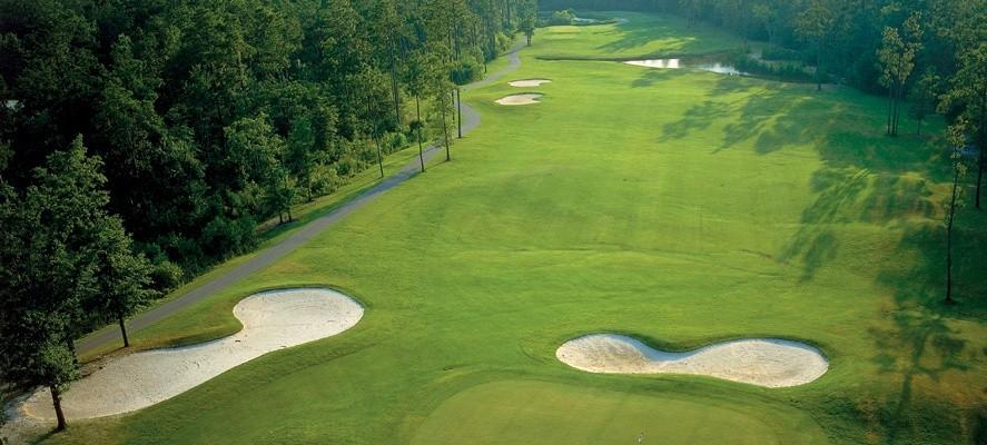 Diamond Back Golf Reviews