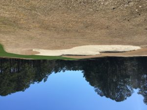 Meadowland and Farmstead Course Updates NC