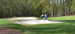 TPC Myrtle Golf Packages